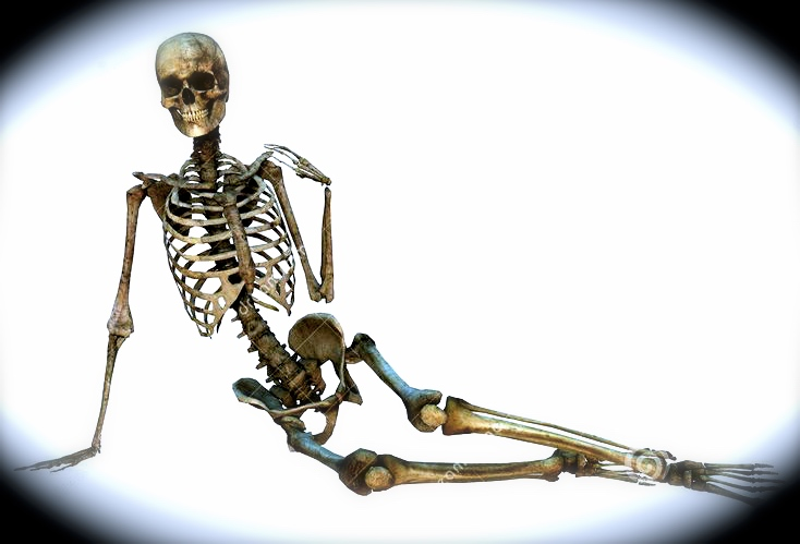 Dazy Bones